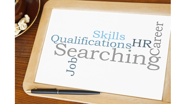 What Qualifications do you need for an HR Career?