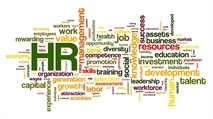 Seven essential HR skills